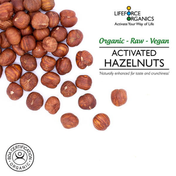 Best activated organic hazelnuts : perfect high energy snack