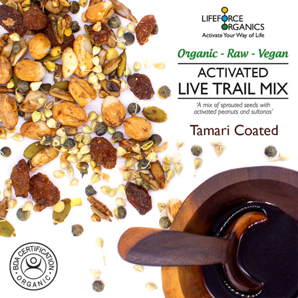 Activated organic trail mix: a high fibre healthy snack